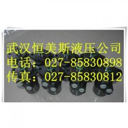 武汉恒美不二越马达OCP-G01-W1-20