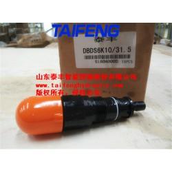 厂家直销泰丰DBDS6K10/31.5直动溢流阀