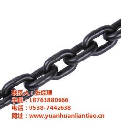 十堰起重链条,泰安鑫洲机械公司,起重链条制