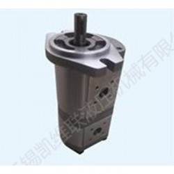 CBK1008F/04F-A3FR,双联齿轮泵