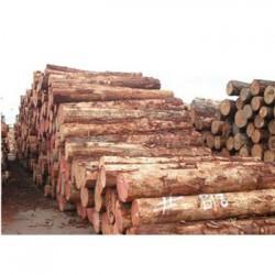 桂林收购松木企业一览表