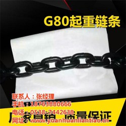 G80起重链条厂家,G80起重链条,泰安鑫洲机械