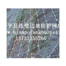 热门边坡防护网上哪买  辽宁边坡防护网