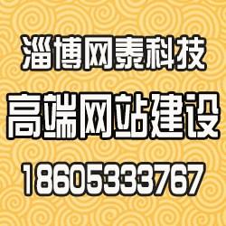 淄博网泰科技(图),张店专业网站建设,淄博网