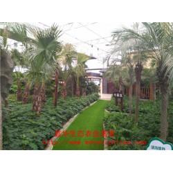 低价促销 玻璃景观温室 生态观光餐厅 园艺温室大棚设计