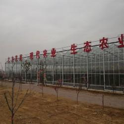 山东温室大棚建设厂家、智能温室设计施工、大棚房建设