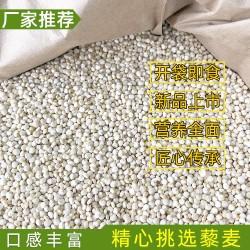 白藜麦批发 玻利维亚进口藜麦直供